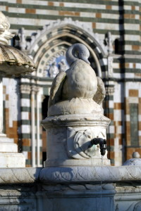 One of the goose of the fountain in Duomo square